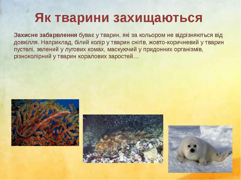 Захисне забарвлення буває у тварин, які за кольором не відрізняються від довк...