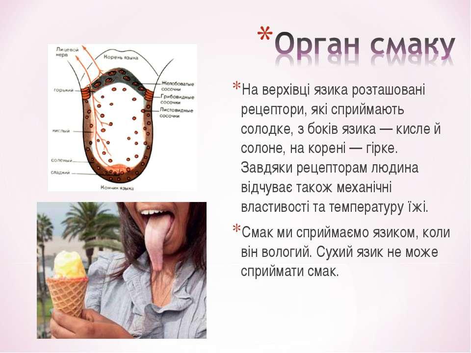 На верхівці язика розташовані рецептори, які сприймають солодке, з боків язик...