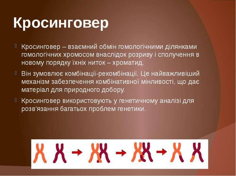 Кросинговер Кросинговер – взаємний обмін гомологічними ділянками гомологічних...