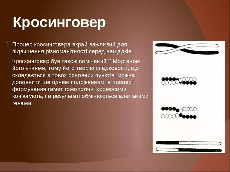Кросинговер Процес кросинговера вкрай важливий для підвищення різноманітності...