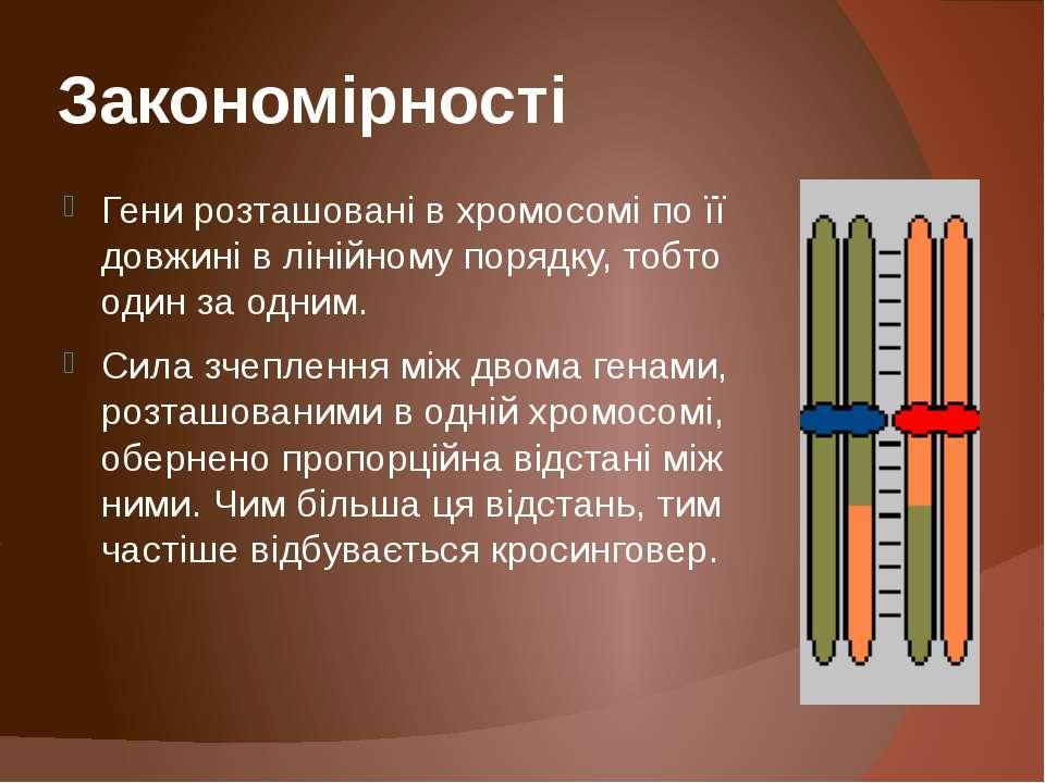 Закономірності Гени розташовані в хромосомі по її довжині в лінійному порядку...