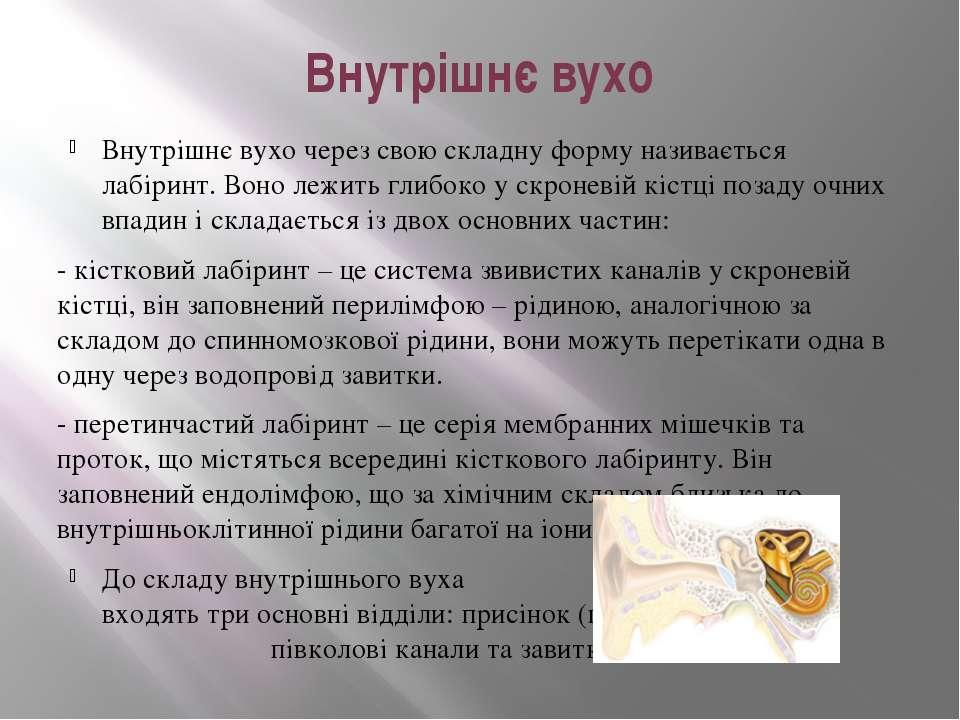 Внутрішнє вухо Внутрішнє вухо через свою складну форму називається лабіринт. ...