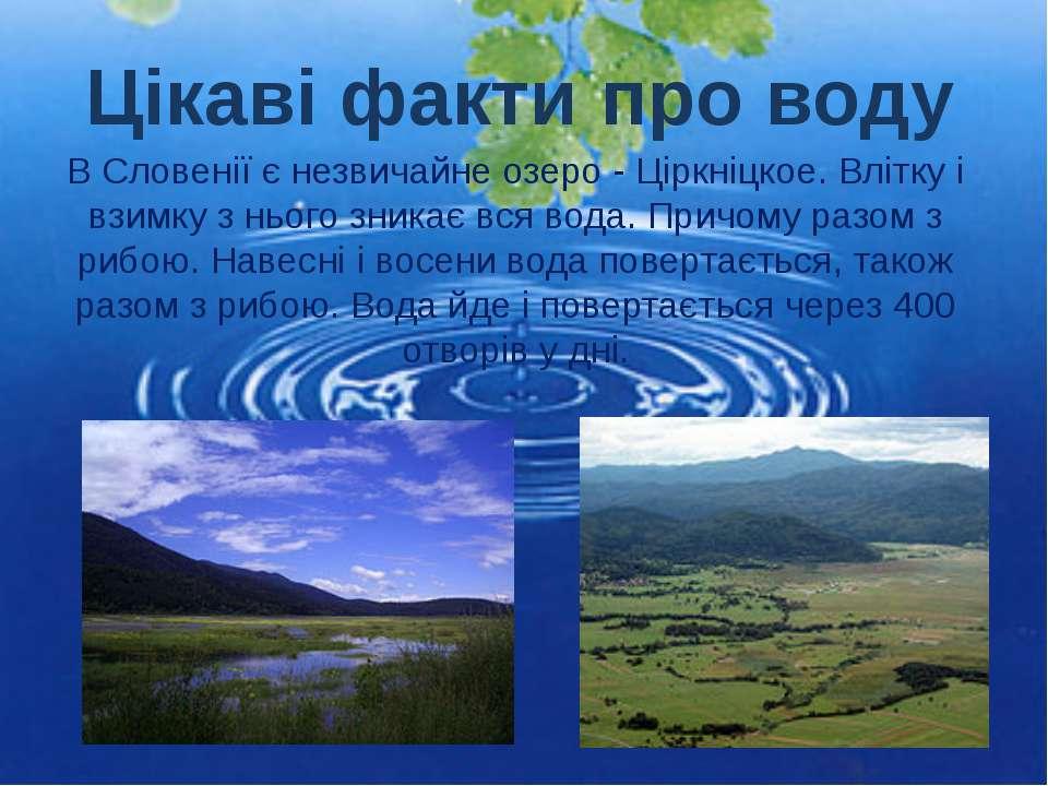 В Словенії є незвичайне озеро - Ціркніцкое. Влітку і взимку з нього зникає вс...