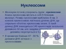 Нуклеосоми Молекули гістонів утворюють групи - нуклеосоми. Кожна нуклеосома м...