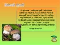 Боровик - найкращий з відомих їстівних грибів. Смак білих грибів м'який, запа...