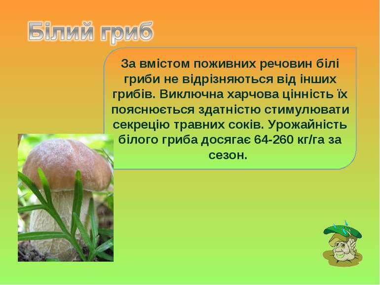 За вмістом поживних речовин білі гриби не відрізняються від інших грибів. Вик...