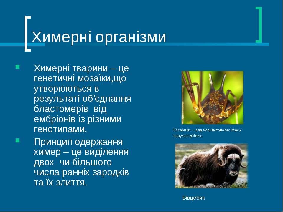 Химерні організми Химерні тварини – це генетичні мозаїки,що утворюються в рез...