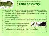 Типи розвитку Залежно від числа стадій розвитку, у переважної більшості комах...