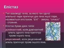 Епістаз Тип взаємодії генів, за якого ген однієї алельної пари пригнічує дію ...