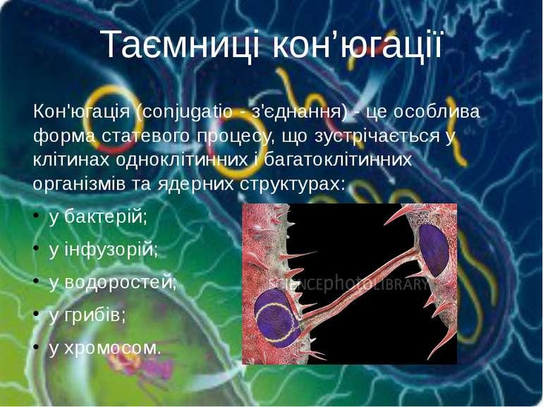 Таємниці кон'югації Кон'югація(conjugatio - з'єднання) - це особлива форма с...