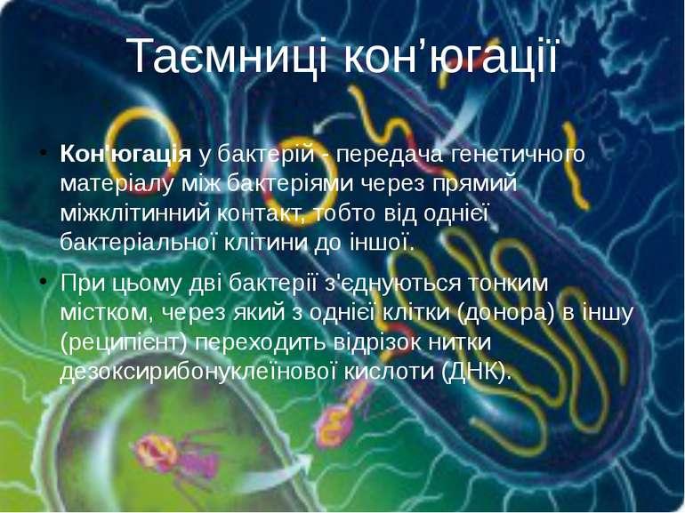 Кон'югаціяу бактерій - передача генетичного матеріалуміжбактеріямичерез п...