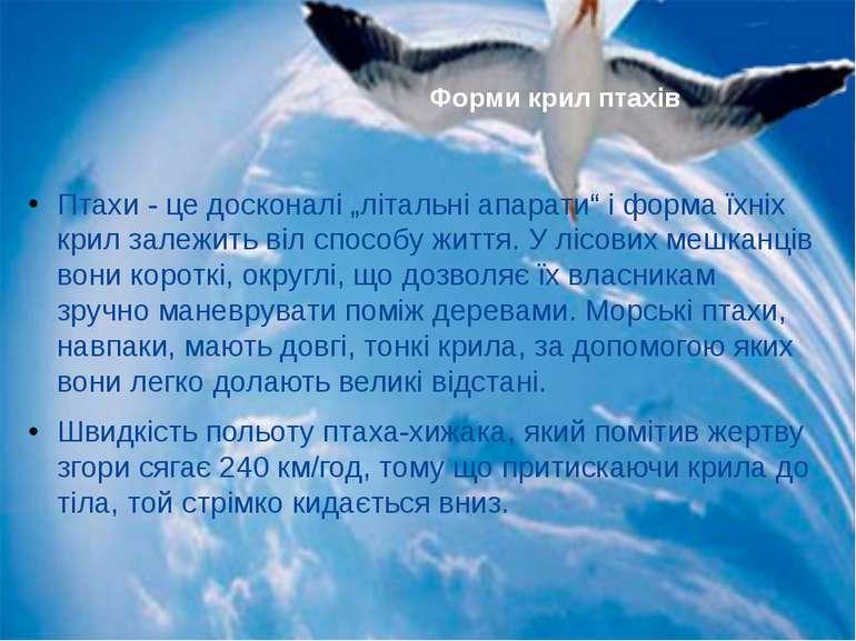 """Птахи - це досконалі """"літальні апарати"""" і форма їхніх крил залежить віл спосо..."""