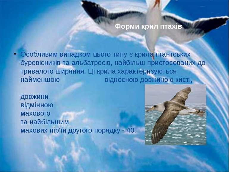 Особливим випадком цього типу є крила гігантських буревісників та альбатросів...