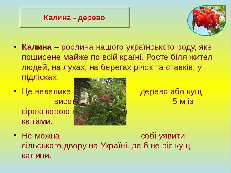 Калина – рослина нашого українського роду, яке поширене майже по всій країні....
