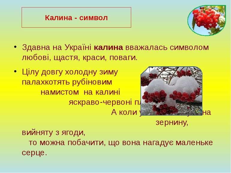 Здавна на Україні калина вважалась символом любові, щастя, краси, поваги. Ціл...
