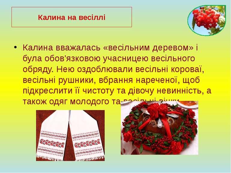 Калина вважалась «весільним деревом» і була обов'язковою учасницею весільного...