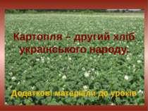 Картопля – другий хліб українського народу. Додаткові матеріали до уроків
