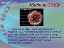 Збудник СНІДу - вірус імунодефіциту людини - ВІЛ, чутливий до фізичних і хімі...