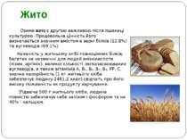 Озиме жито є другою важливою після пшениці культурою. Продовольча цінність йо...
