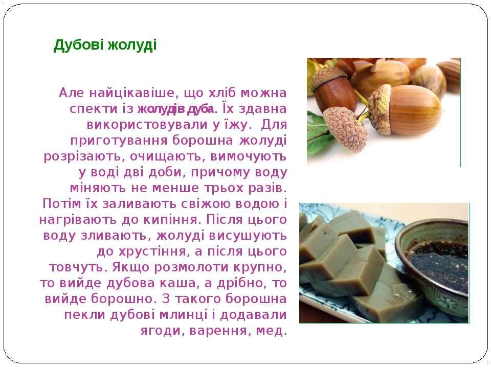 Але найцікавіше, що хліб можна спекти із жолудів дуба. Їх здавна використовув...