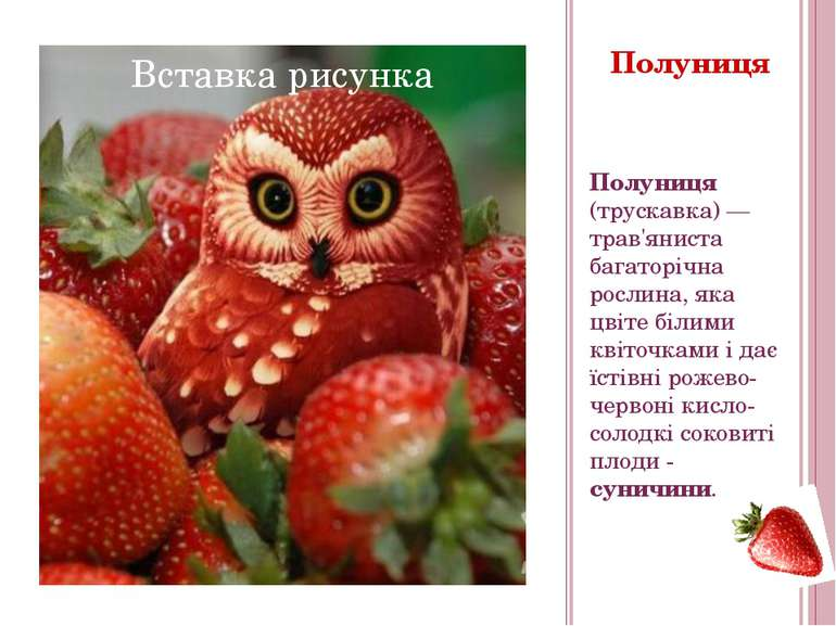 Полуниця Полуниця (трускавка)— трав'яниста багаторічна рослина, яка цвіте бі...