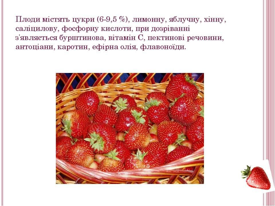 Плоди містять цукри (6-9,5%), лимонну, яблучну, хінну, саліцилову,фосфорну...