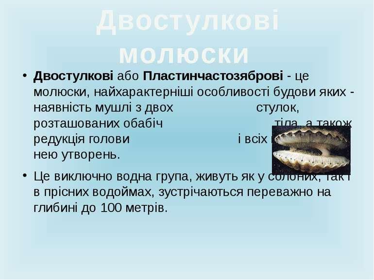 Двостулкові абоПластинчастозяброві- це молюски, найхарактерніші особливості...