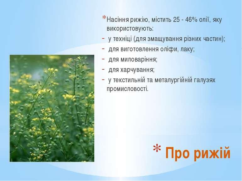 Насіння рижію, містить 25 - 46% олії, яку використовують: у техніці (для змащ...