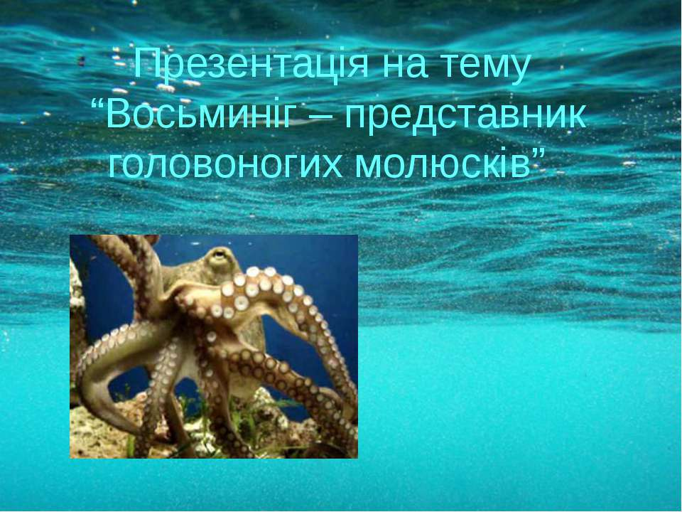 """Презентація на тему """"Восьминіг – представник головоногих молюсків"""""""