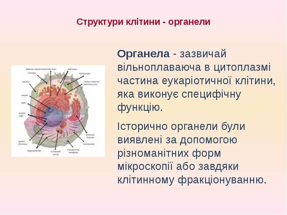 Структури клітини - органели Органела - зазвичай вільноплаваюча в цитоплазмі ...