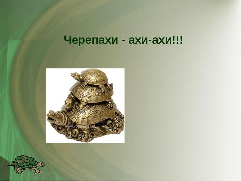 Черепахи - ахи-ахи!!!