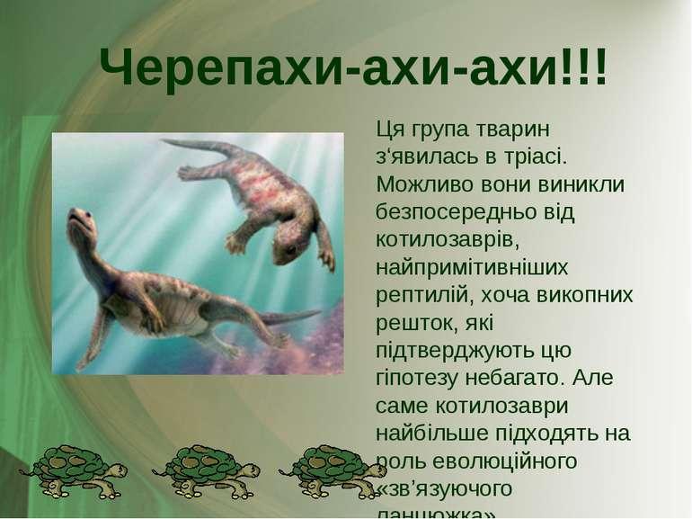 Ця група тварин з'явилась в тріасі. Можливо вони виникли безпосередньо від ко...