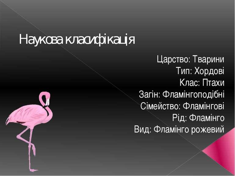 Наукова класифікація Царство: Тварини Тип: Хордові Клас: Птахи Загін: Фламінг...