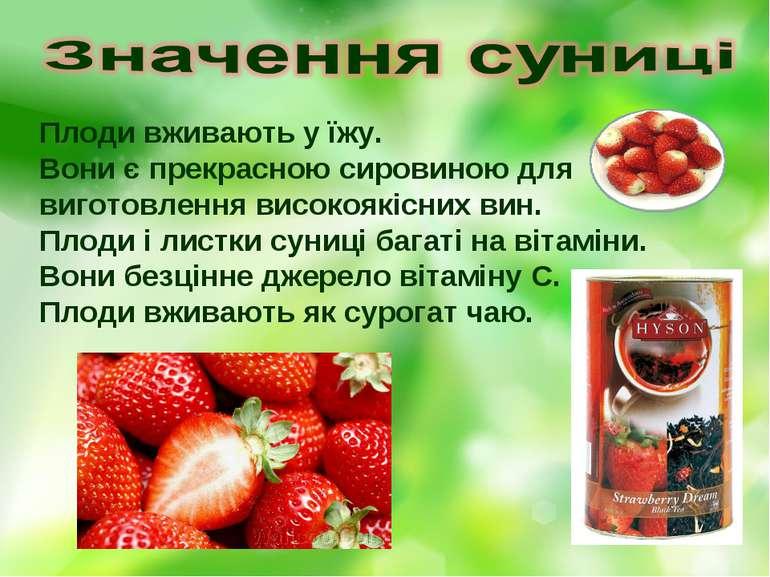 Плоди вживають у їжу. Вони є прекрасною сировиною для виготовлення високоякіс...