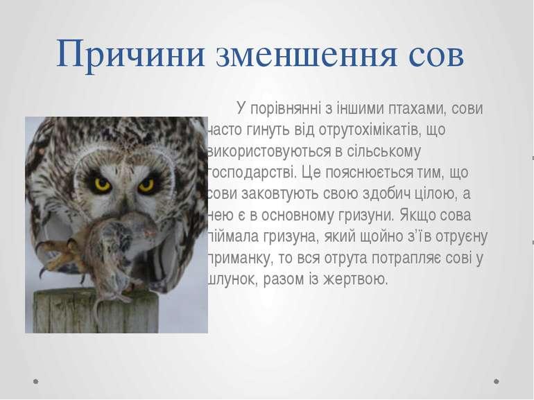 У порівнянні з іншими птахами, сови часто гинуть від отрутохімікатів, що вико...
