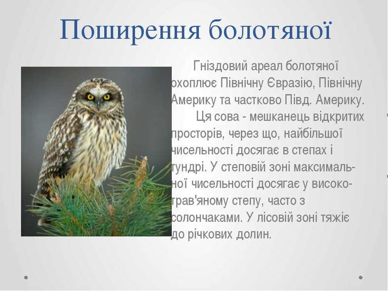 Поширення болотяної Гніздовий ареал болотяної охоплює Північну Євразію, Півні...