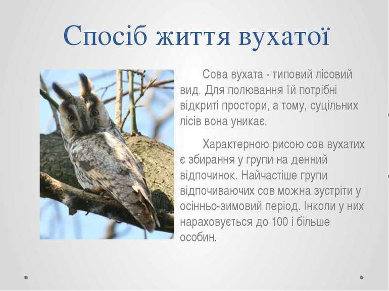 Спосіб життя вухатої Сова вухата - типовий лісовий вид. Для полювання їй потр...