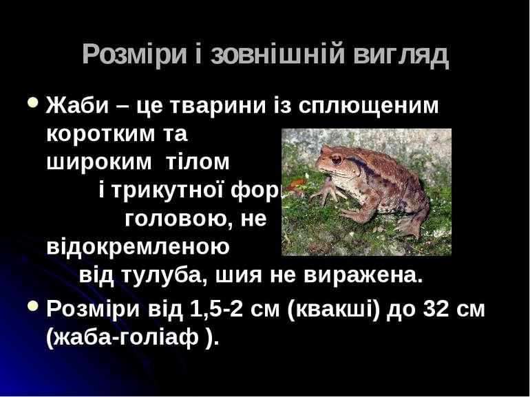 Розміри і зовнішній вигляд Жаби – це тварини із сплющеним коротким та широким...