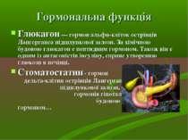 Гормональна функція Глюкагон— гормон альфи-кліток острівців Лангерганса підш...