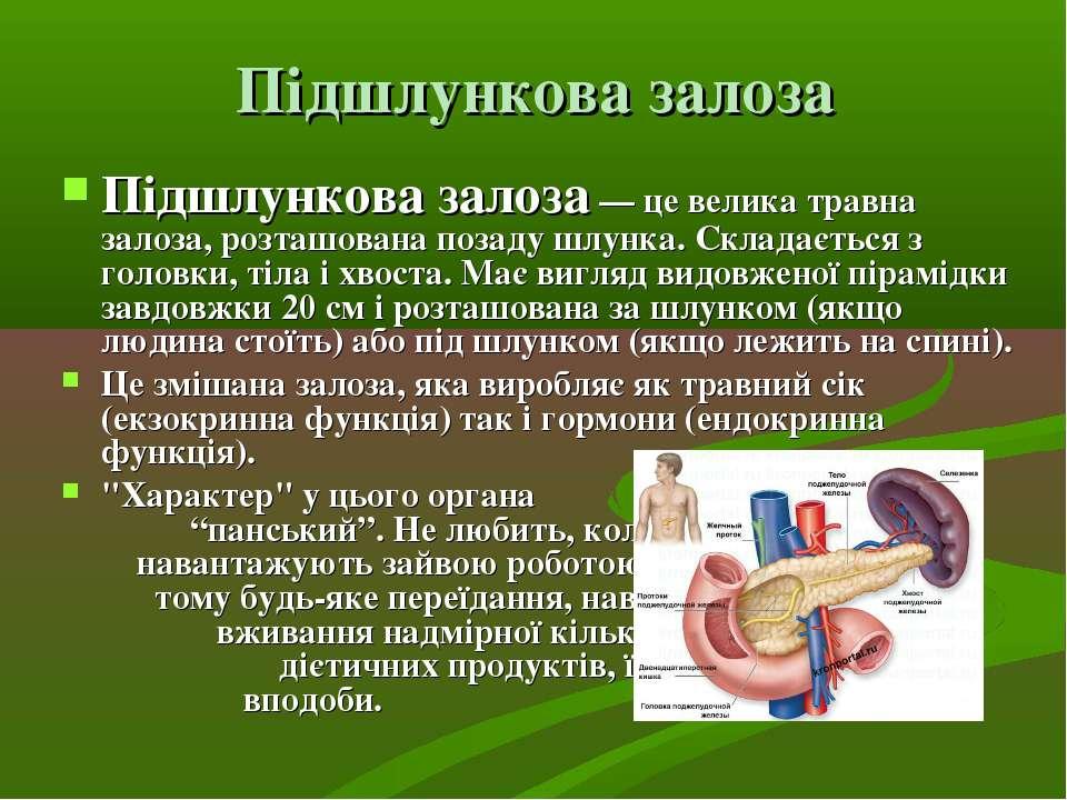 Підшлункова залоза Підшлункова залоза— це велика травна залоза, розташована ...