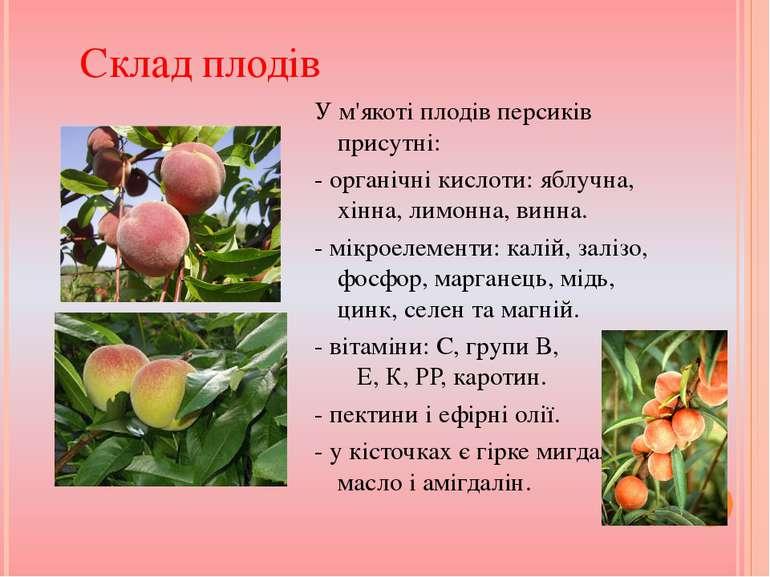 У м'якоті плодів персиків присутні: - органічні кислоти: яблучна, хінна, лимо...