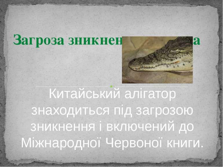 Китайський алігатор знаходиться під загрозою зникнення і включений до Міжнаро...