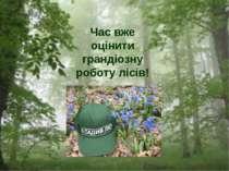 Час вже оцінити грандіозну роботу лісів!