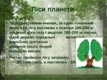 За підрахунками вчених, за один сонячний день 1 га лісу поглинає з повітря 12...