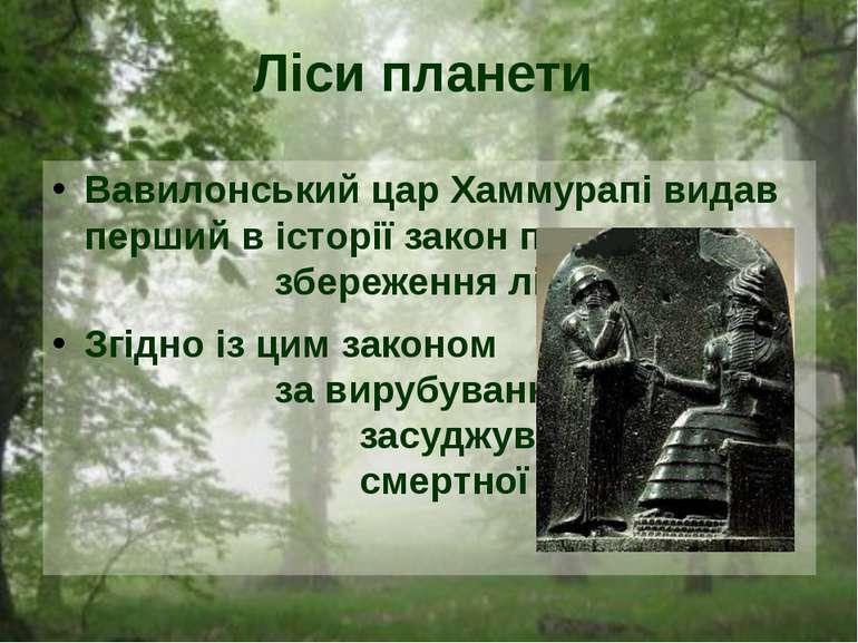 Вавилонський цар Хаммурапі видав перший в історії закон про збереження лісів....