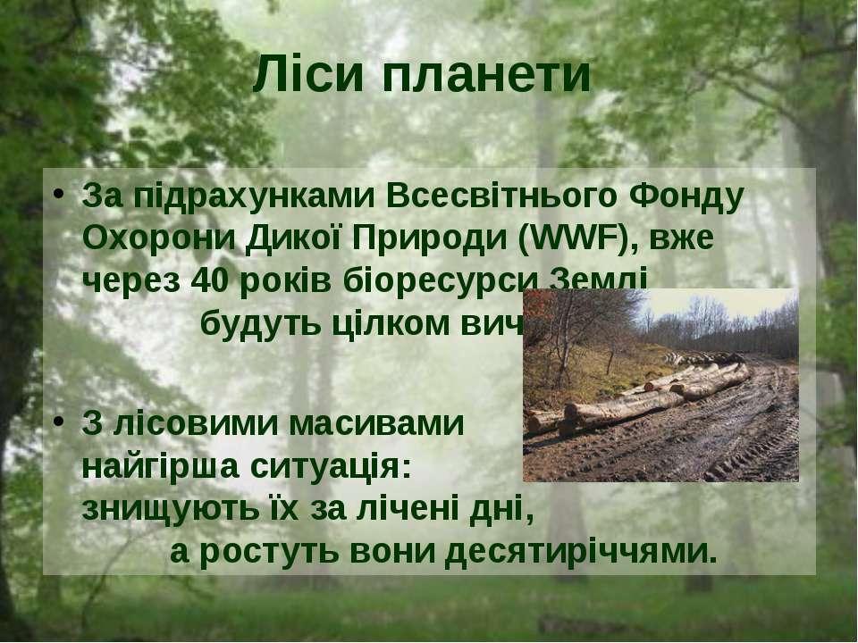 За підрахунками Всесвітнього Фонду Охорони Дикої Природи (WWF), вже через 40 ...