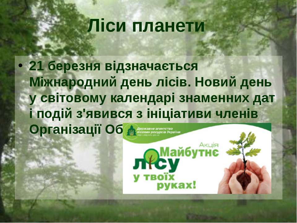 21 березня відзначається Міжнародний день лісів. Новий день у світовому кален...