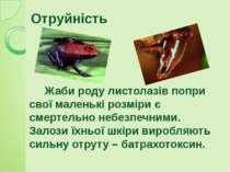 Жаби роду листолазів попри свої маленькі розміри є смертельно небезпечними. З...