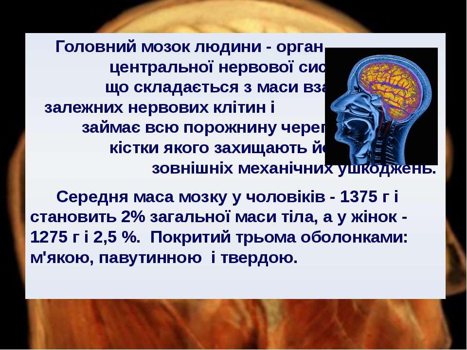 Головний мозок людини - орган центральної нервової системи, що складається з ...