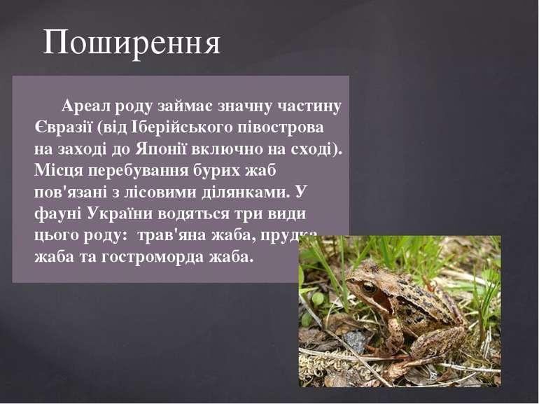 Поширення Ареал роду займає значну частину Євразії (від Іберійського півостро...
